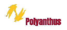 Polyanthus Sales